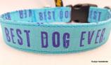 Klickverschluss Halsband Best Dog Ever blau / 17.