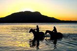 Sunset Horseback Riding