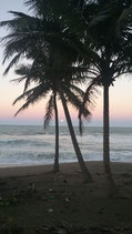 SAMANA - LOS HAITISES NATIONALPARK  UND PLAYA RINCON