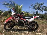Tauro 250 cc, Enduro