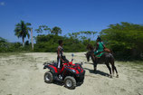 Offroad Quad Horseback Riding Kombi