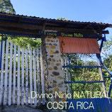 コスタリカ「ディビーニョ・ニーニョ農園」ナチュラル 中煎り 200g