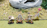 SAVAGE ORC COMMAND - COMMANDEMENT ORQUES SAUVAGES