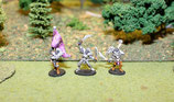 DARK ELF INFANTRY COMMAND - COMMANDEMENT INFANTERIE ELFES NOIRS