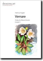Vernare  - Helmut Kogler