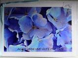 """Doppelkarte 20 - Hortensie """"Alles Liebe und Gute für dich"""""""
