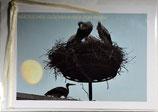 """Doppelkarte 16 - Störche mit Mond """"Herzlichen Glückwunsch zum Baby"""""""