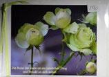 "Doppelkarte 04 - Rose Lovely Green ""Die Ruhe der Seele...."""