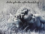"""Postkarte 07 """"Victoria und Mauzi - Nichts geht über...."""""""