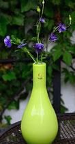 Glasvase grün hoch