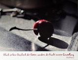 """Postkarte 18 """"Süßkirsche - Glück ist ein....."""""""