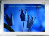 """Doppelkarte 15 - Blaue Krönchen """"Herzlichen Glückwunsch zur...."""""""