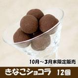 きなこショコラ 1箱12個入