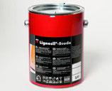 KEIM Lignosil®-Scudo -  farblose Spezial- beschichtung und Zwischenbeschichtung für den Innen- und Außenbereich