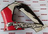 Левый пластик для мотоциклов Honda CBR929RR 00-01