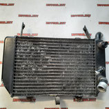 Радиатор для мотоцикла Suzuki TL1000