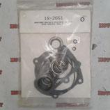 Комплект уплотнителей прокладок для лодочного мотора Johnson and Evinrude 85-300 сил