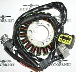 Генератор для мотоцикла WR250r