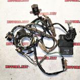 Коммутатор Проводка Статор для мотоцикла Honda CRF100 XR100 XR80