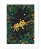 Affiche petit guépard