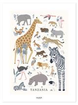 Affiche- animaux d'Afrique