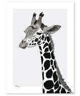 Affiche serengiti, la girafe