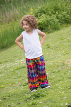 Allegro Multicolor Boy Pants