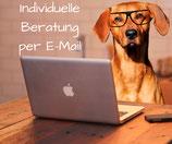 Persönliche Beratung per Mail