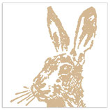Hase Gold