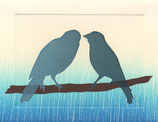 2 love birds, blue woodsy fade