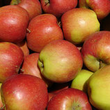 Apfel Braeburn 125-150cm gross