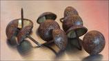 Polsternagel 1507 Flach Altgold - Gefleckt Rötlich