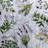 SI16中 F57 L852700 Soft Herbs