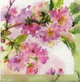 SP小3 F05 DC- C1251920 Pink Cherry Blossom