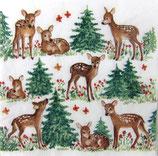 XS中 X31 DLX-33304755 Baby Deer