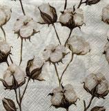 SI17中 F87 TL704400 Cotton Branches