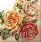 SP小3 F55 CLOG022001 Tree Roses