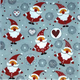 SPX小1 X04 500230 Funny Santas
