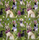 SI15中 F108 L853700 Bunny Dogs ある分のみで終了