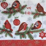 XS中 X26 006501 Handmade Bullfinches
