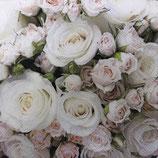 SI15中 F132 211811 Romantic Roses