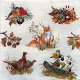 SI7中 F133 L706000 Autumn Wildlife