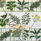 SI8中 F57 13309330 Herbs