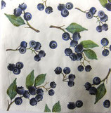 SP小1 F16 C601300   Blueberries
