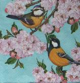 SI10中 F13 SDOG019801 Tits on Cherry Blossom Twig