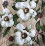 SI9中 F44 340195 Trois Magnolias Blanc