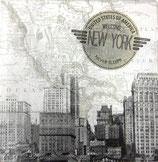 SI中5 F115 13308920 New York