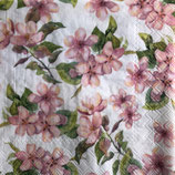 SI15中 F04 13314295 Cherry Blossom Rose