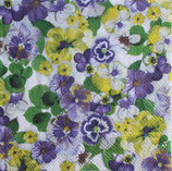 SI11中 F20 13311572 Pansy all over Purple