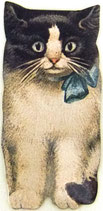 PS Greeting Cards MS CA191 Cat